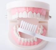 口の中の清掃について